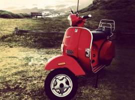 PE-Red-Px150-Duncan